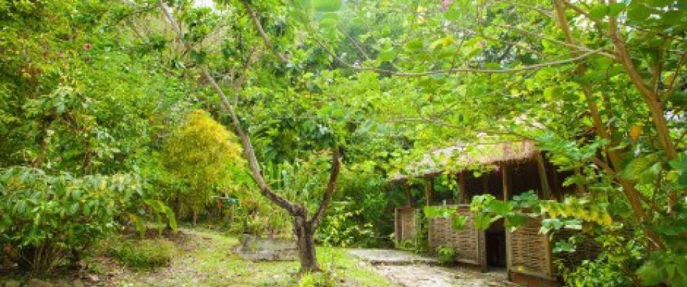 Jardin Créole Ecotours